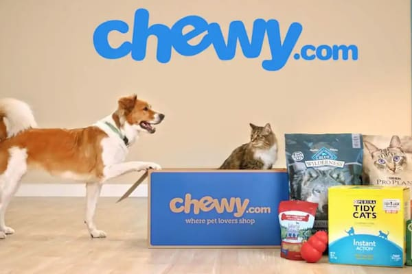 chewy pet store